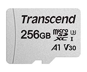 TRANSCEND Micro SDXC 300S UHS-I U3 256 Go - Rue Monthgallet