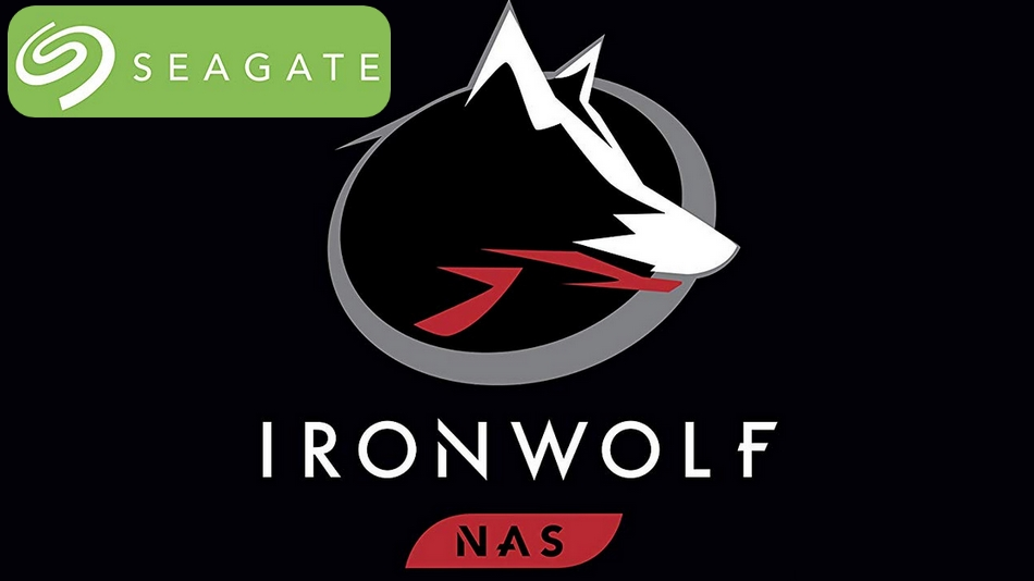 Seagate IronWolf 8 To (ST8000VN004) rue montgallet