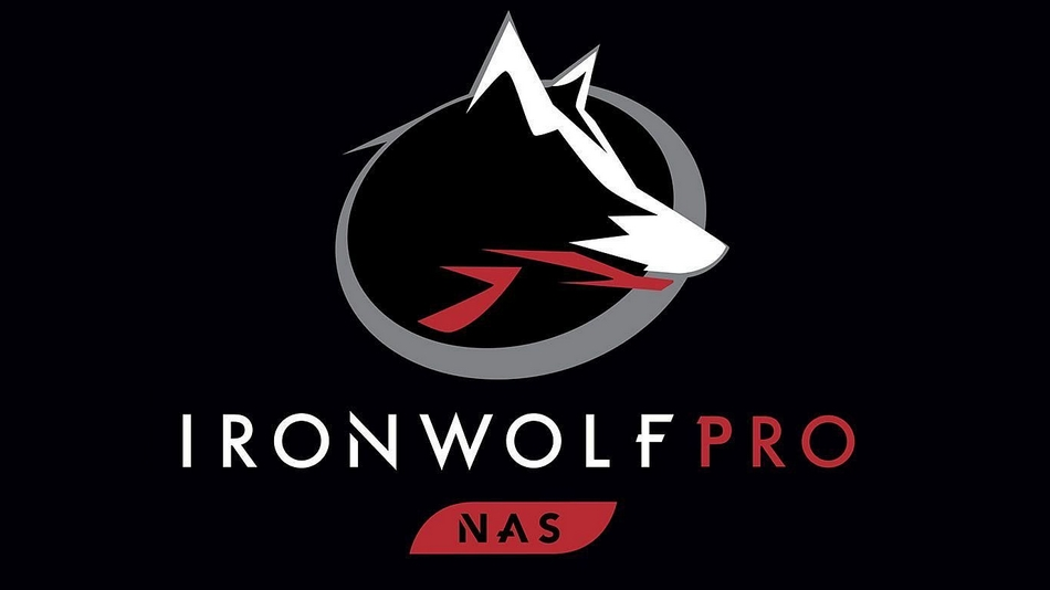 Seagate IronWolf Pro 16 To rue montgallet